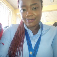 Accounting student offering accounting lessons up to university level in Lagos State