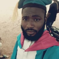 BSc. Economics graduate and can take pure economics from secondary school to university level