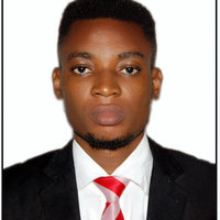 Computer Science Student offering maths and computer lessons up to university level in Lagos, Ibadan and across Nigeria.