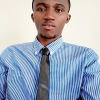 Engineering graduate offering maths, further maths and physics lessons up to sss 3