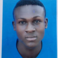 Engineering student offering Chemistry and Mathematics up to University level in Lagos