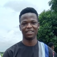 Engineering student offering mathematics and physics lesson up to university level in kaduna