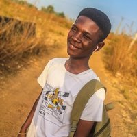 Engineering student offering Maths and physics up to University level in Nigeria lessons