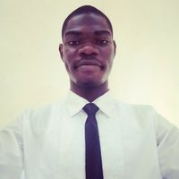 Engineering student offering maths tutorial from secondary school to university level at Delta State