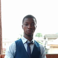 I am a Language and Literary graduate of Obafemi Awolowo University (OAU). I teach English, literature in English, government and civic education with over five years of experience.