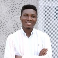 Professional Web Developer in Yaba Lagos, will teach remote and physical classes