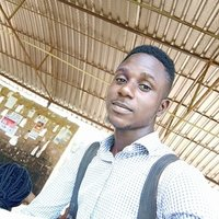Statistics student offering Maths and Statistics lecture up to university level in Akure
