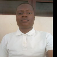Statistics student offering Maths and Statistics up to University level in Ibadan