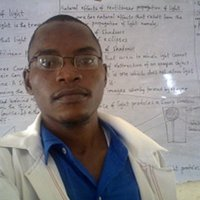 A versatile tutor with experience in maths and physics lessons in Lagos